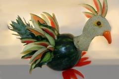 Fruit_parrot